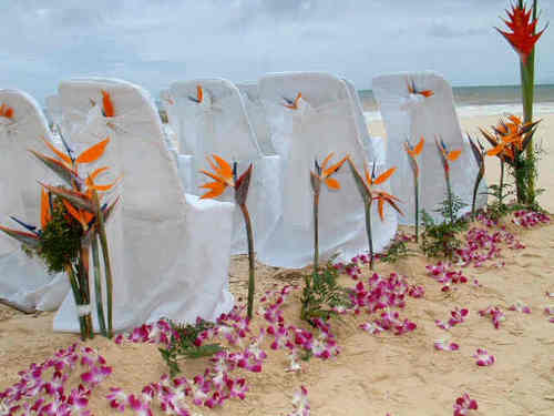 de praia, praia Wedding