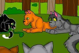 ravenpaw, firestar, and graystripe