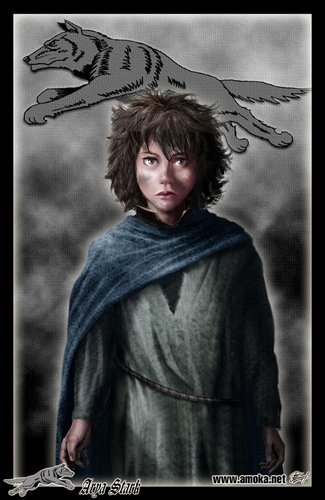 House Stark wallpaper probably containing a stole and a cloak titled Arya Stark