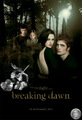 Breaking Dawn Movie - breaking-dawn-movie-2011 photo