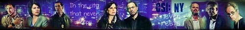 CSI: NY Group Banner