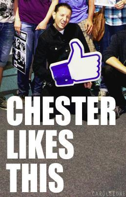 Chester likes this