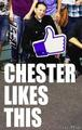 Chester likes this - chester-bennington fan art