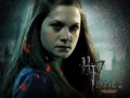 DH Part II - ginny-weasley photo