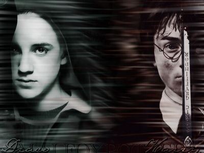 Draco VS Harry ( год 2)