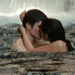 E&B - the-twilight-saga-vampires-wolves icon
