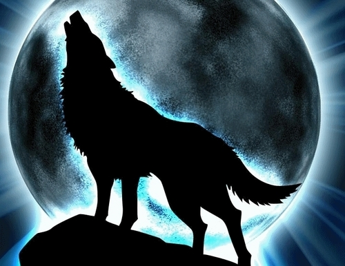 Fantasy Hintergrund probably with an embryonic cell, a sign, and a drehscheibe, plattenspieler called Fantasy wolf