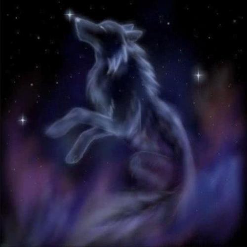 fantaisie chó sói, sói