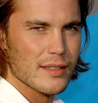 Taylor Kitsch wallpaper possibly containing a portrait titled Taylor Kitsch