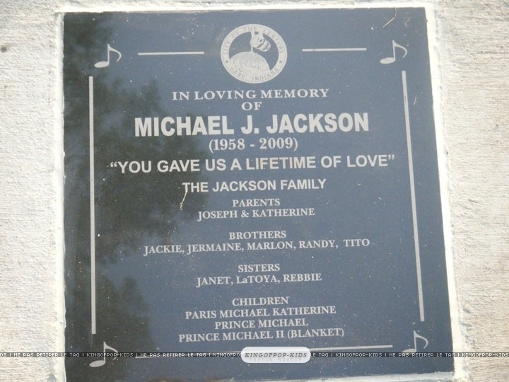 LOVE - prince-michael-jackson photo