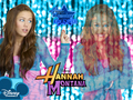 Miley Cyrus!!! - hannah-montana-and-miley wallpaper