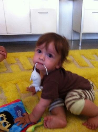 Misha['s] son