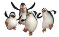New Images! - penguins-of-madagascar photo