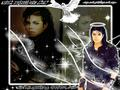 michael-jackson - R.I.P Michael wallpaper