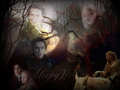 Sleepy Hollow - ichabod-crane-sleepy-hollow wallpaper