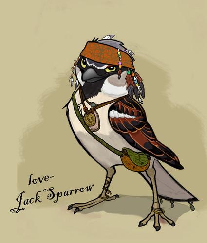 Sparrow (Jack)