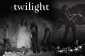Twilight Series - twilight-series photo