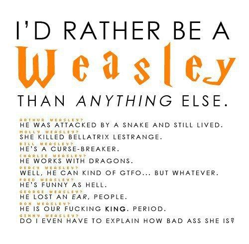 Harry Potter Vs. Twilight wallpaper called Weasley's <3