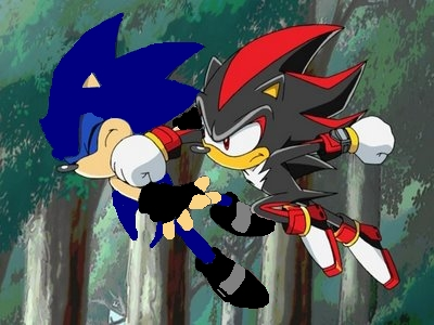 ZERO VS SHADOW
