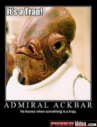 admiral pwns!!!!