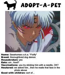 let's adopt Fluffy-sama!
