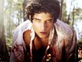 teen भेड़िया <3