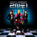 2ne1 Cant nobody - kpop-girl-power photo