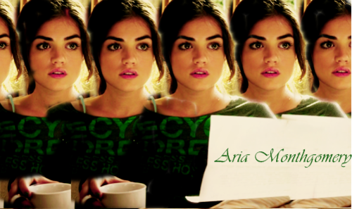 Pretty Little Liars TV Show wallpaper possibly containing a portrait titled Aria <3