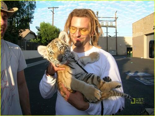Bradley Cooper: Tiger Cub Cuddling!