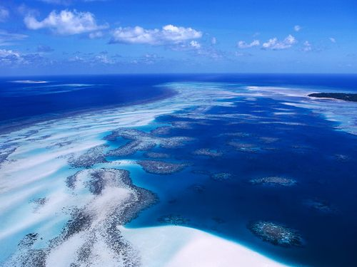 Coral Reef - Torres Strait Island - australia Wallpaper