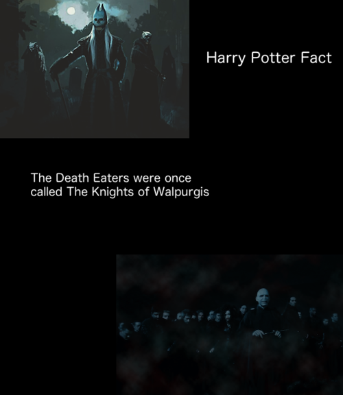 Death Eaters VS Order of the Phoenix images Death Eaters
