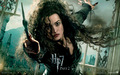 Deathly Hallows Part II Official Wallpapers - bellatrix-lestrange wallpaper