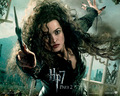 Deathly Hallows Part II Official Wallpapers - death-eaters wallpaper