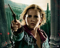 Deathly Hallows Part II Official Wallpapers - hermione-granger wallpaper