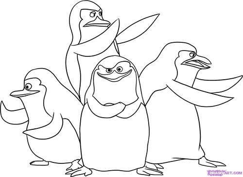 Draw of penguins! XD