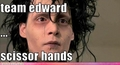 Edward Scissorhands - edward-scissorhands photo