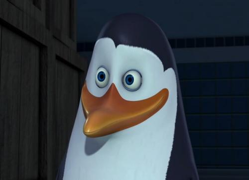 Kowalski! :D