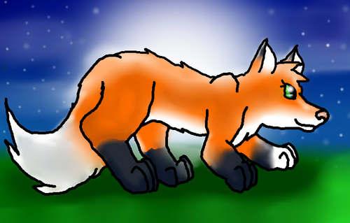 Midnight Hunting