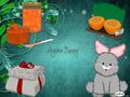 My Angora Bunny
