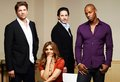 Necessary Roughness Cast