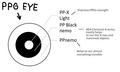 PPG eye