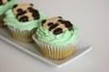 Panda Matcha Cupcakes