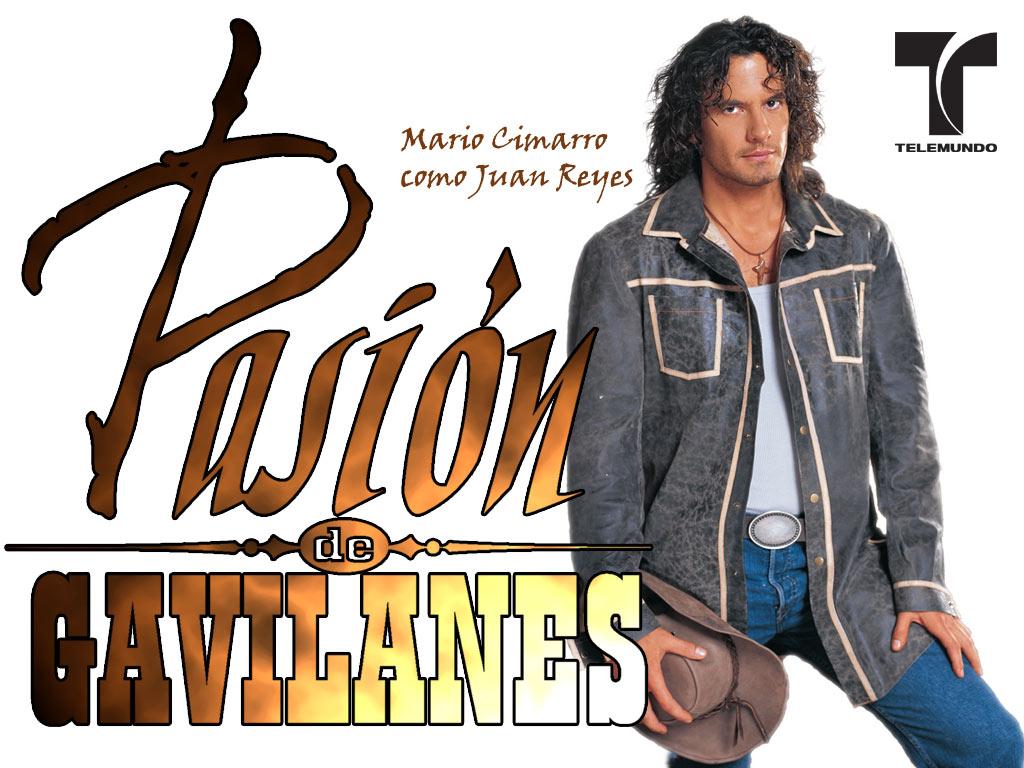 http://images4.fanpop.com/image/photos/23300000/Pasion-de-Gavilanes-minhas-telenovelas-23333672-1024-768.jpg