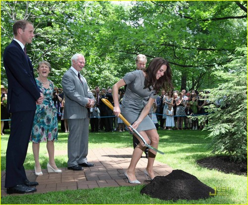 Prince William et Kate Middleton fond d'écran containing a croquet called Prince William & Kate: arbre Planting Ceremony!