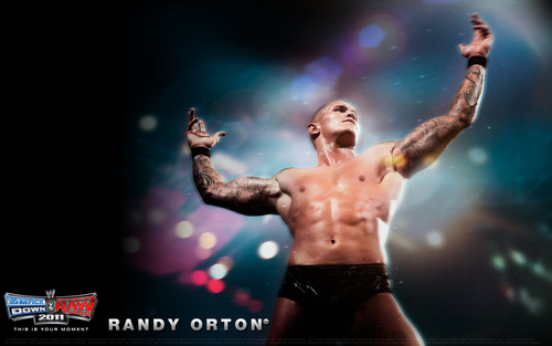 WWE wallpaper probably with a concert called Randy orton wallpaper