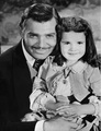 Rhett Butler  - rhett-butler photo