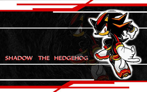 Shadow is the best! achtergrond probably with anime entitled Shadow achtergronden
