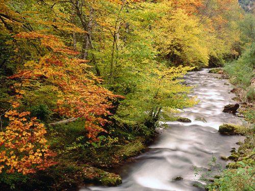 Somiedo Natural Park - Asturias