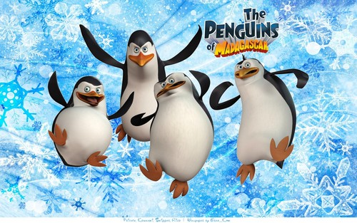 The Penguins Of Madagascar 壁纸