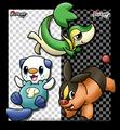 Unova starters - pokemon-the-unova-region fan art